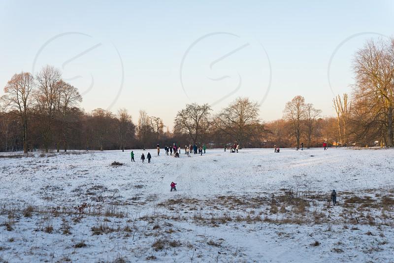 Scenery and outdoor activities at Volkspark Rehberge during winter season inside Wedding neighborhood in Berlin Germany  photo