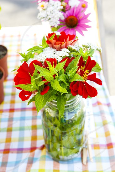 Farm to Table - Herbs and flowers photo