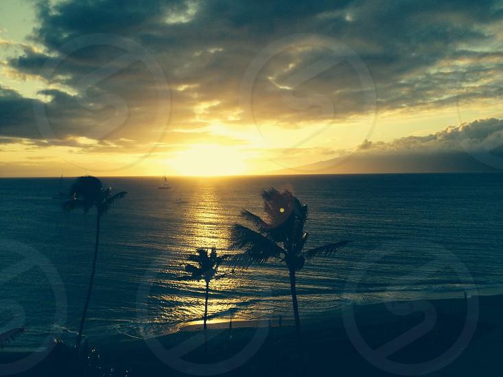God's beauty! photo