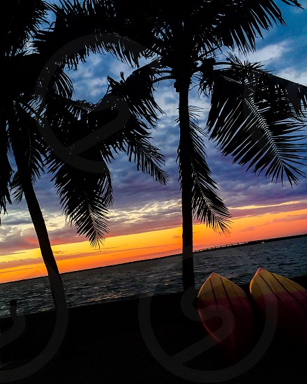 Key Largo kayaking sunsets palm trees Florida Bay photo