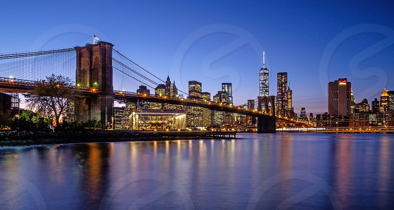 A view of NYC from Brooklyn Bridge Park. photo