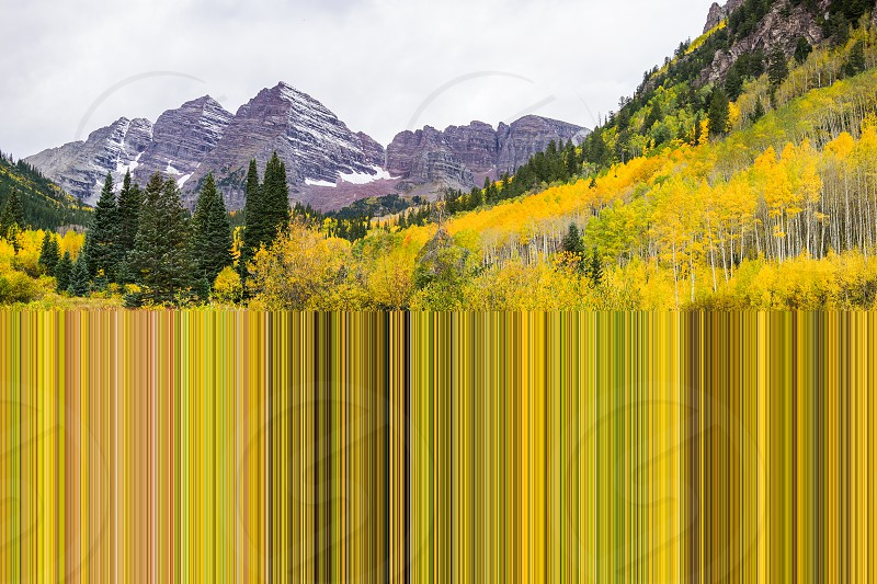 The Bridge with Aspen Trees with Golden Yellow Leaves and Mountain photo