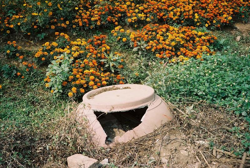 Broken in garden photo