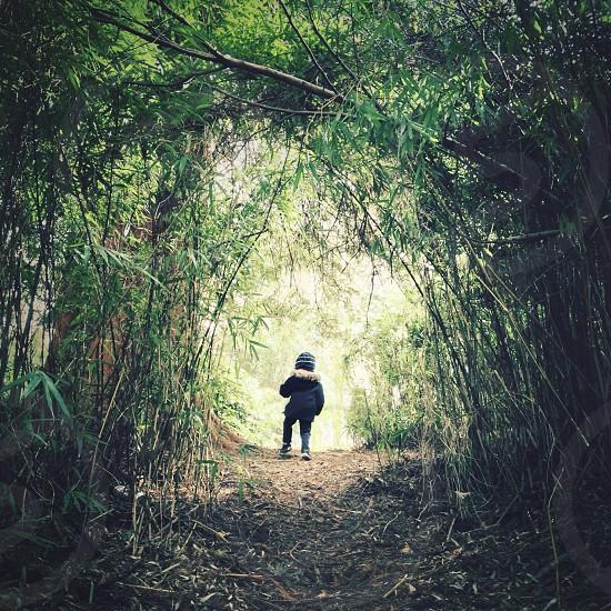 The explorer.  photo