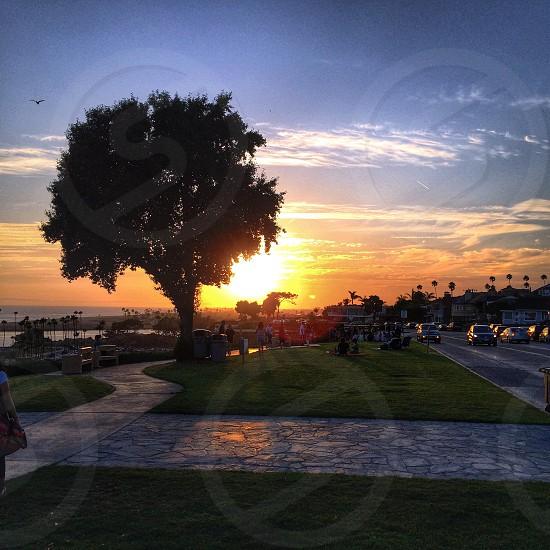 Corona Del Mar CA.  photo