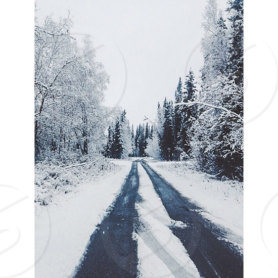 snow covered road photo