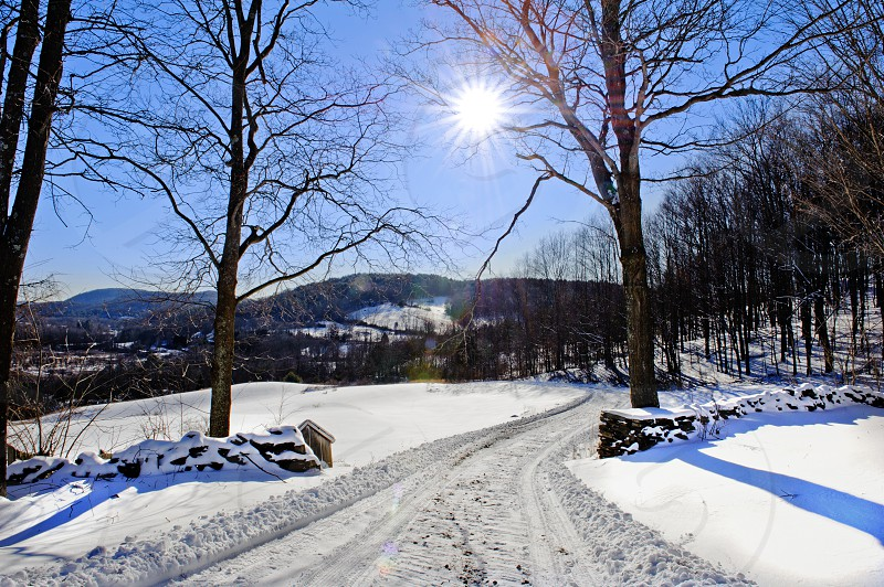 Sunny day with snow cover photo