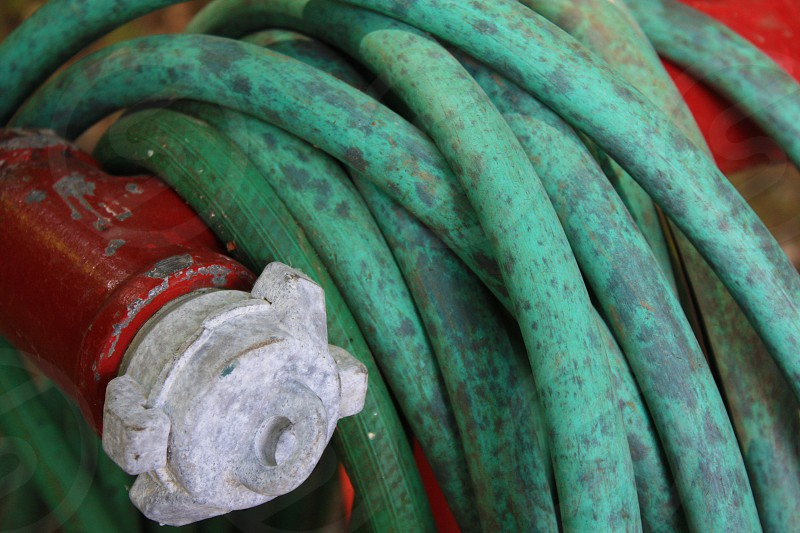 Fire Hose Green and Red. Location: Goldstream Park Vancouver Island Canada. photo