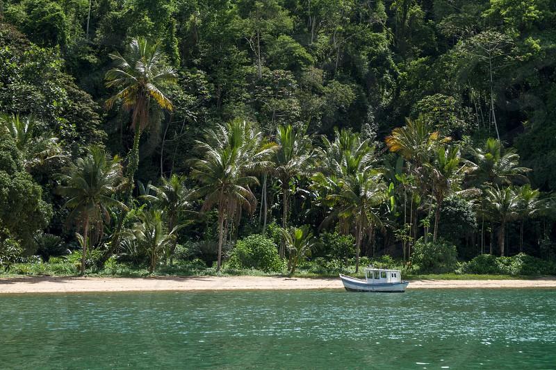 holiday island tropical jungle sea boat sand beach travel tourism coconut green nature photo