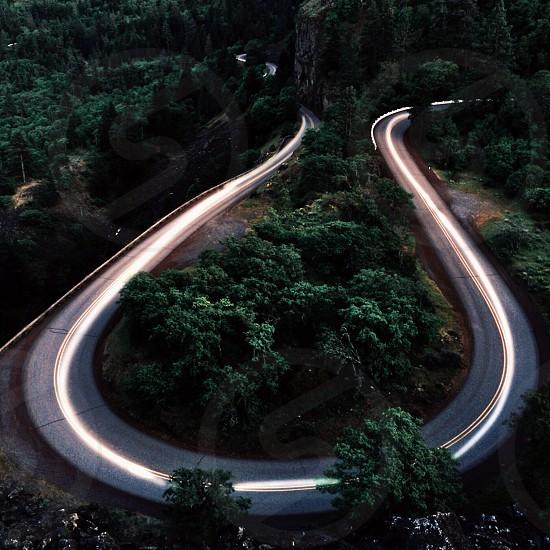 road beside trees photo