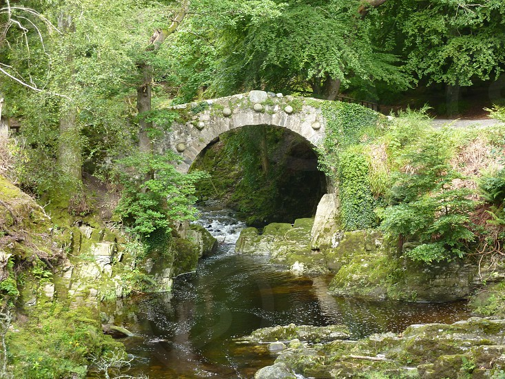 Foleys Bridge Tollymore Forest Park Bryansford Road Newcastle Co. down photo