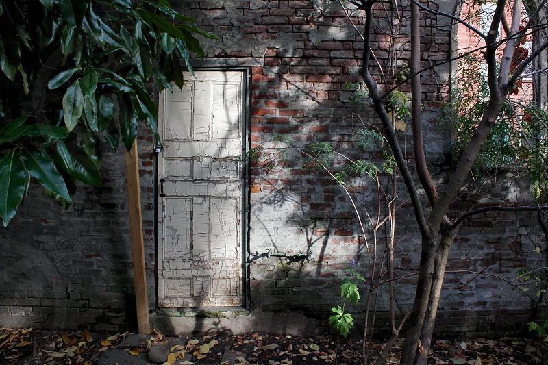 New York City Garden West Village White Door photo