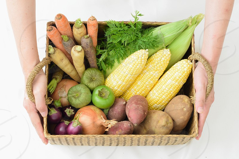 Woman holds the basket with many kind of vegetables. Farm Fresh Vegetables Basket Corn Carrot Onion Potato Egg Plant Hand Woman photo