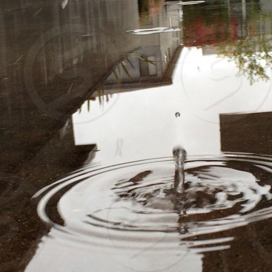 water drop photo photo