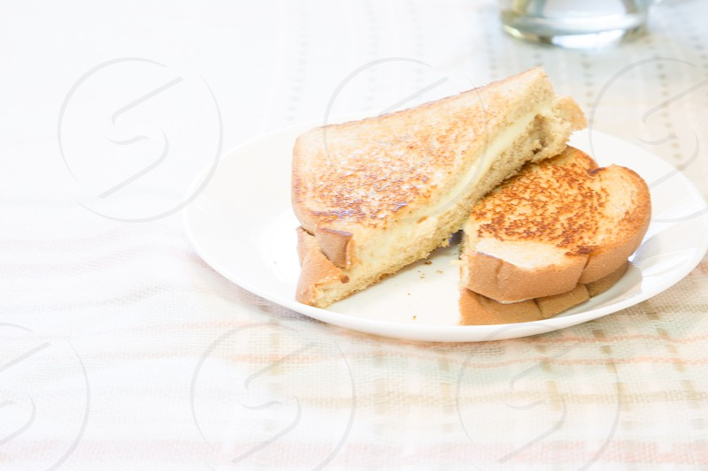 white bread grilled cheese photo
