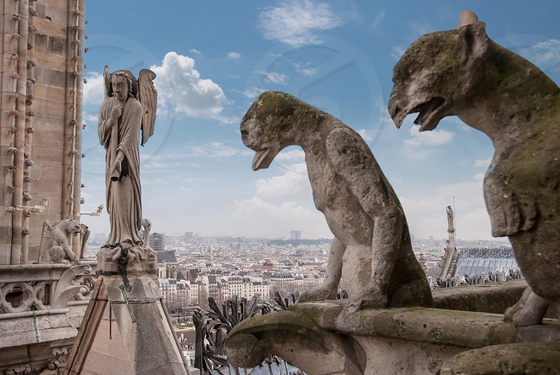Stone demons gargoyle and chimera with Paris city on background. View from Notre Dame de Paris photo