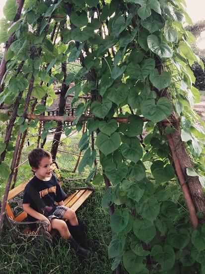 boy in black t shirt sitting on brown wooden bench photo