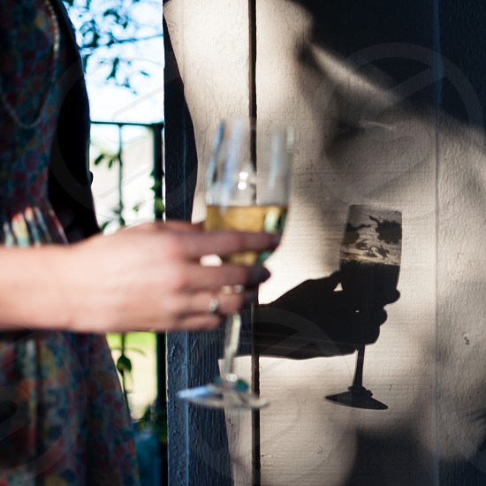 Champagne glass in shadow photo