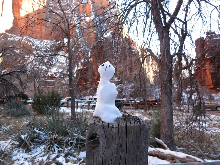 snowman in zion photo