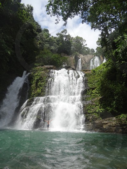 falls surrounded by trees photo