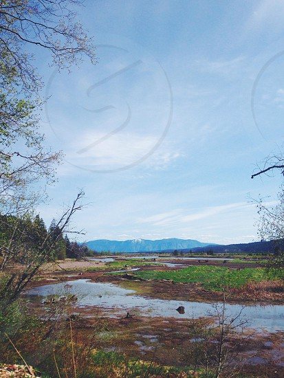 photo of wetlands under blue sky photo