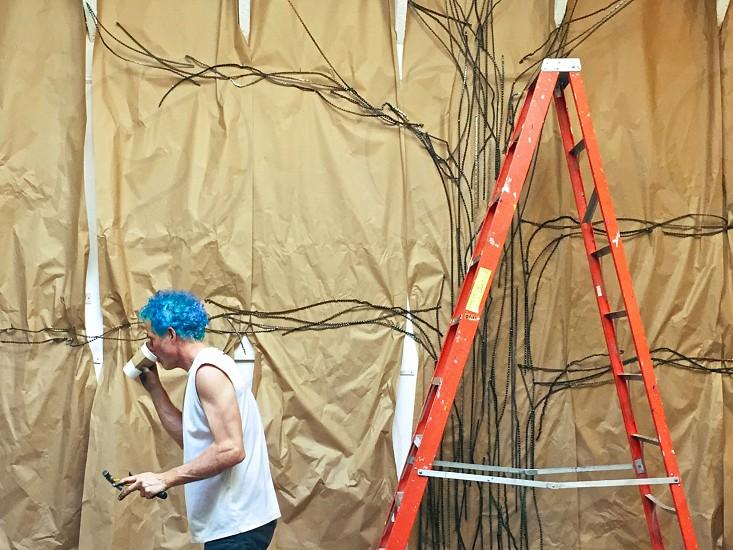 Artist blank wall ladder photo