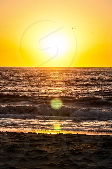 Spring morning sunrise at the beach ocean sun photo