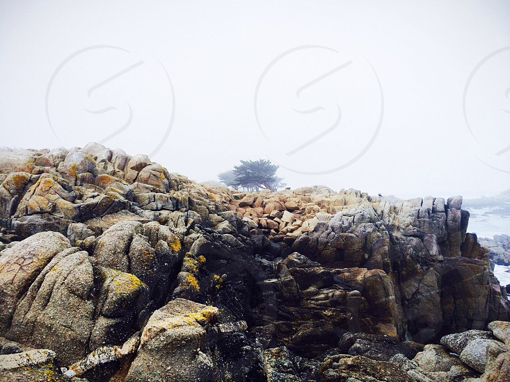 black cliff photo