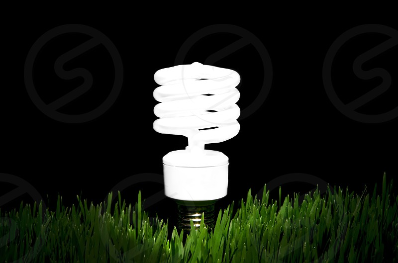 Green energy efficient bulb photo