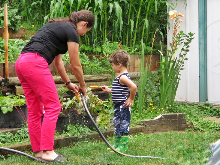 household chores gardening washing carrots garden hose teaching mother son garden boxes on hillside shed vegetables summer nutritious homegrown vitamins healthy choice photo