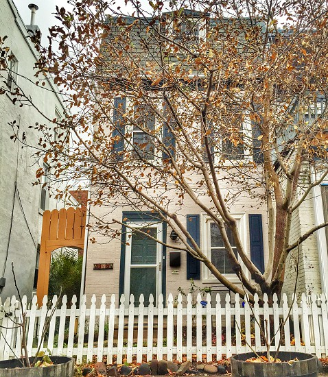 West Philadelphia Row Home  photo