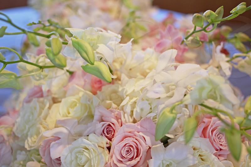 Pastel rose centerpiece photo