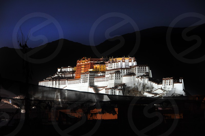 Potala Palace at Night photo