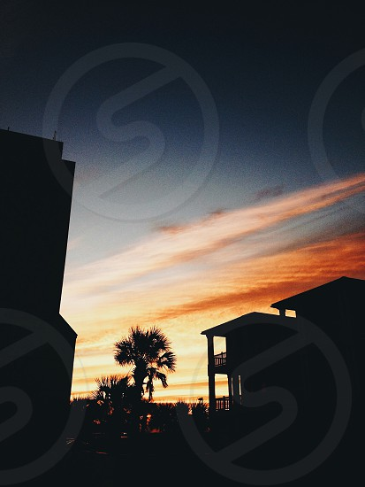 orange cloudy sky at sunrise behind palm tree and building silhouettes photo