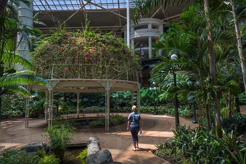 woman in blue shirt standing in front of grey plant dome during daytime photo