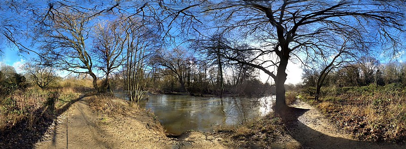 blue sky white clouds pond surrounding by trees photo