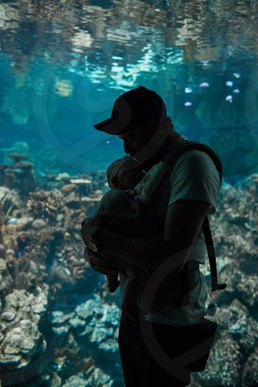 Image of a dad wearing his baby girl in a carrier at an aquarium.  photo