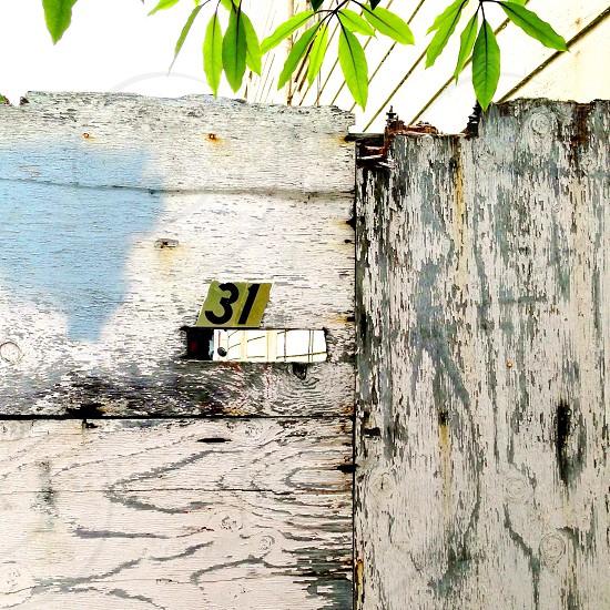 31 mailing address photo