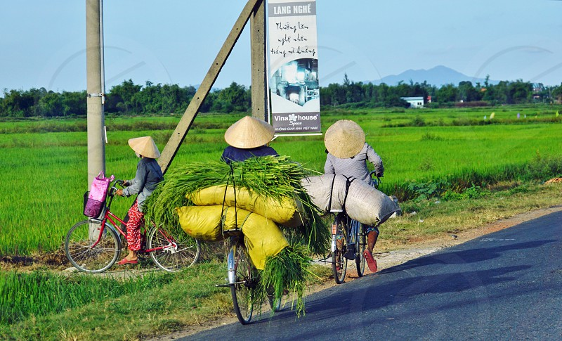 Three women transporting loads on bicycles in Vietnam photo
