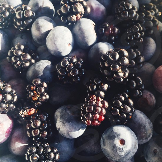 blackberries and blueberries photo