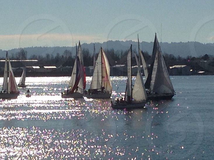 Sailboats on the Columbia River photo