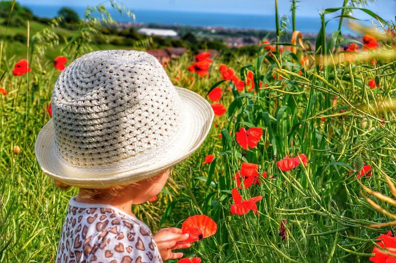 Girl hatchild poppy investigate captivate  photo