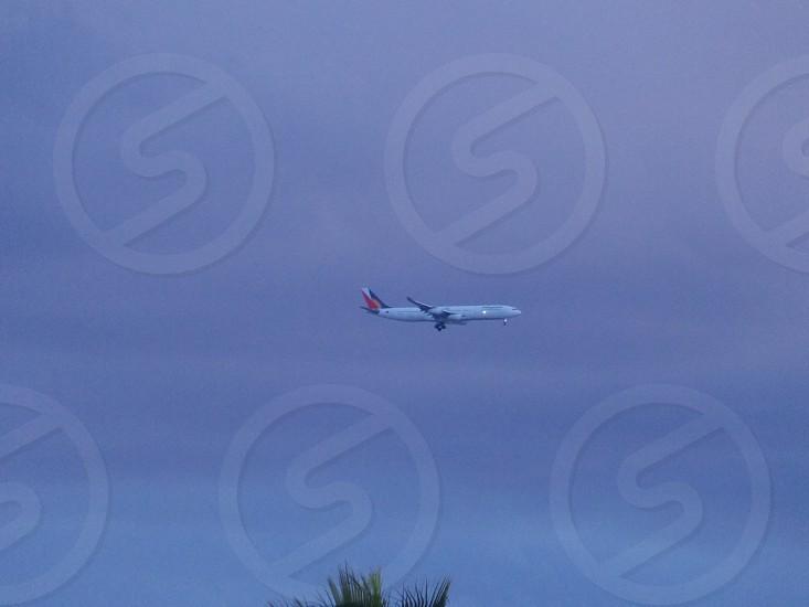 Philippine airline airplane photo