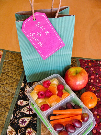 "Back to school ""green bag lunch"" concept with fresh healthy vegetarian and vegan snacks apple berries grapes carrot sticks on wood table and cloth with fall colors. photo"