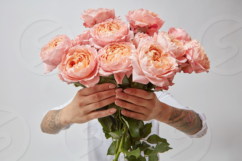 pink roses. A bouquet of roses woman holds in hands on a gray background valentine's day photo