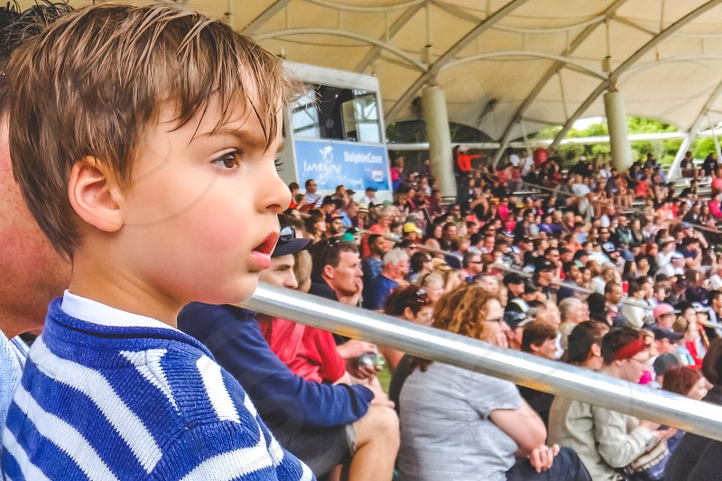 little boy intently watching a show large crowd of people watching a show audience  photo