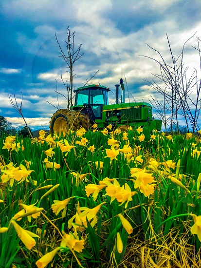 Spring time flowers  southern beauty farm  tractor green  photo