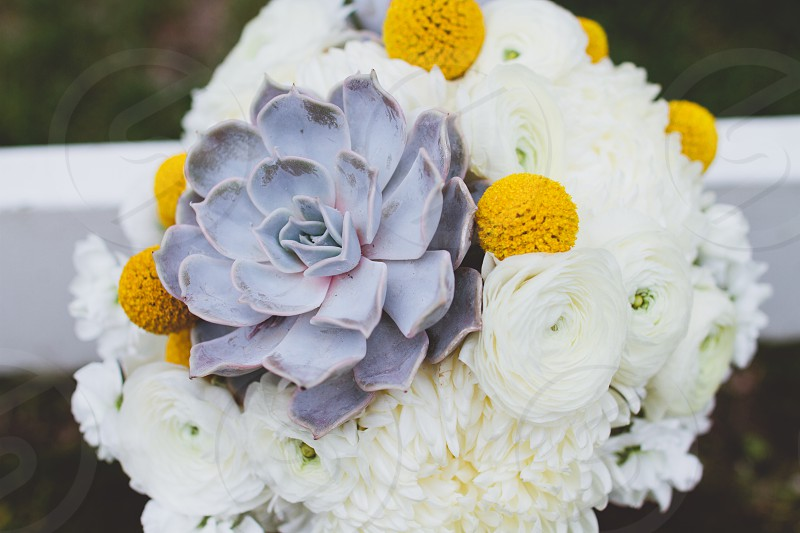Bouquet of flowers with succulents.  photo