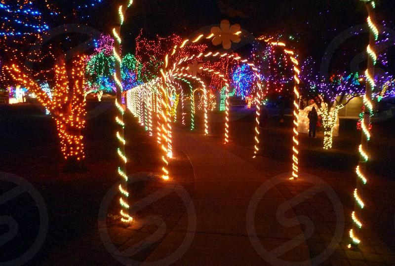 Christmas lights holiday small town Lewiston ID photo