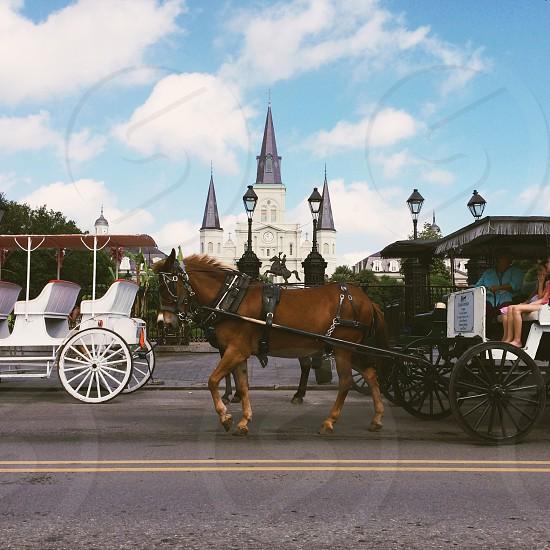 Jackson Square New Orleans LA photo